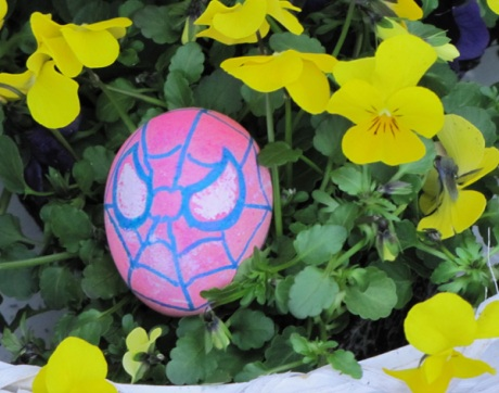 The Amazing, Astonishing, Spectacular Spider-Egg!